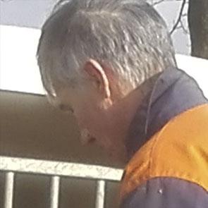 Jaap Miedema